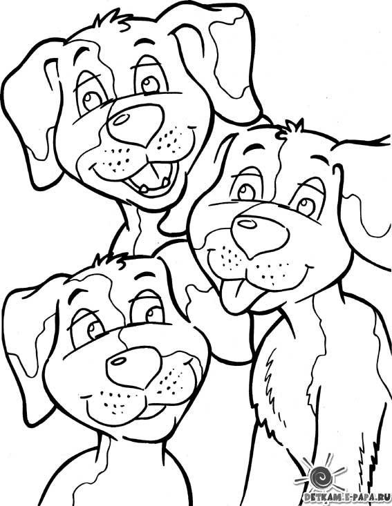 Kolorowanka z psami Kolorowanki Psy