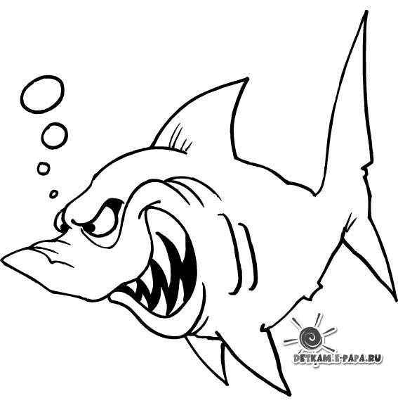 Kolorowanka rekin Kolorowanki Kolorowanki Ryby