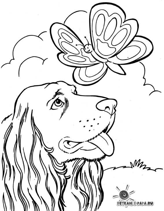 Kleurplaten Poezen En Honden Samen.Kleurplaten Honden Samen Met Poezen Kleurplaat Kat In Kopje Ik Wil